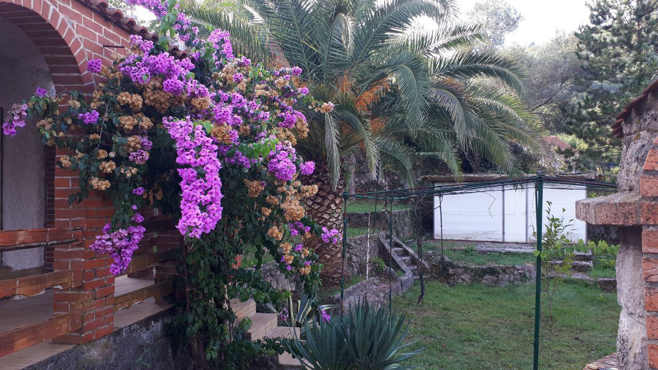 Petite maison de campagne avec terrain, garage et chalet, à Bjelila…